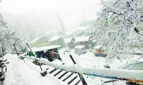 Heavy snowfall: Srinagar administration appeals general public to avoid using private cars till