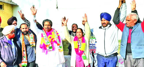 Cong won't be cowed down by BJP's 'rants': Bhalla