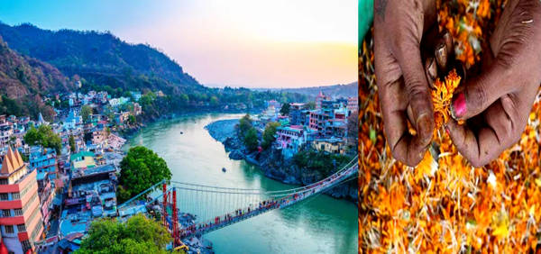 Ganga clean up in Rishikesh: Flowers offered by devotees to be used for making incense sticks