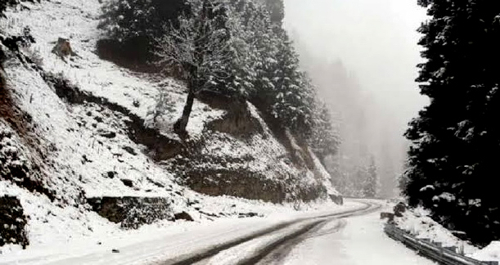 Cold wave intensifies in Kashmir, dry weather to continue till Christmas Day
